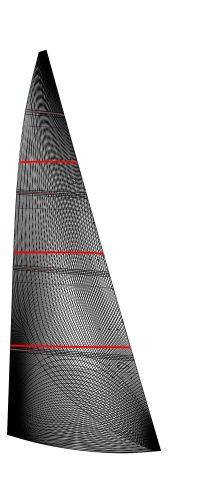 FOC Membrane - Starlight